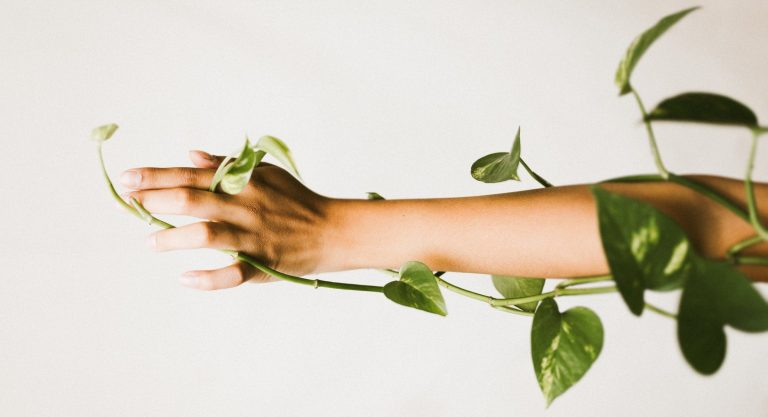 a hand and forearm tangled in a leafy vine reach left across a blank background.